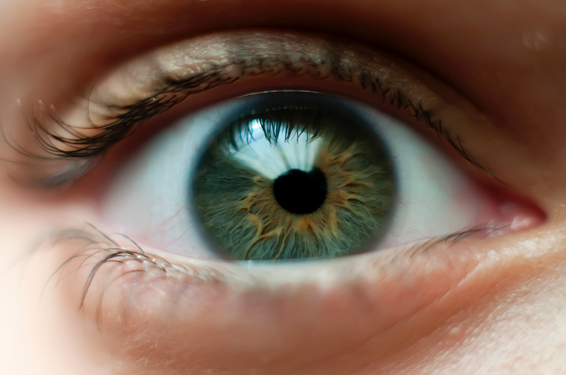 6 Interesting Facts about Human Eyes