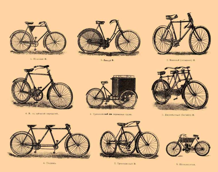 The Backward Bike and Neural Elasticity