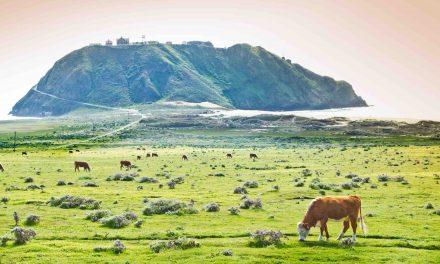 Esselen Nation in California Regains 1,200 Acres of Land